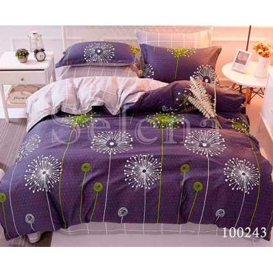 Комплект Постельное белье Selena бязь 100243 Одуванчики 2