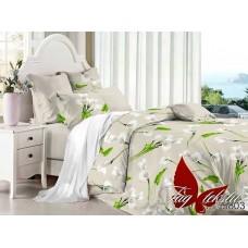 Комплект постельного белья с компаньоном TM Tag-tekstil поплин PL5803