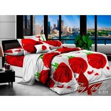 Комплект постельного белья TM Tag-tekstil R519