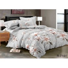 Комплект постельного белья TM Tag-tekstil R7151